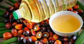 Olio di palma, di girasole o di mais? Piuttosto ilburro